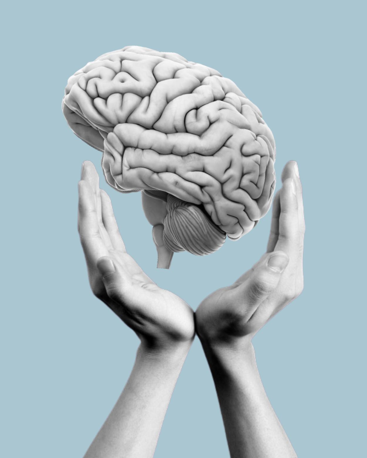 Brain-Home-Thumbnail
